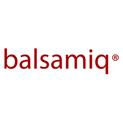 balsamiq-vector-logo-small